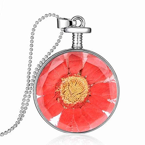 WYFLL Personalisierte Modetrend Schmuck Runde Glas Getrocknete Blume Halskette Hot Days Daisy Getrocknete Blume Parfüm Flasche Anhänger Thick Bian Mix